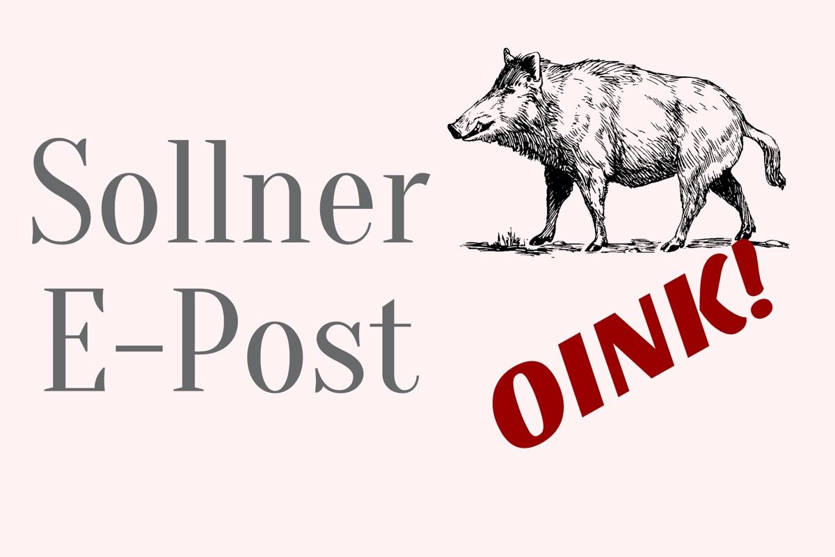 Magazin und Newsletter Solln